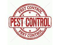 Pest Control Bradford