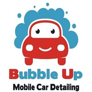 Bubble Up mobile car detailing Bunbury Bunbury Area Preview