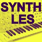 SYNTHESIZER & TECHNIEK LES / KORG / ROLAND /YAMAHA/ ETC.
