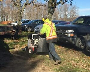 Fall / Leaf / Yard cleanup / Eavestrough Cleaning Kitchener / Waterloo Kitchener Area image 8
