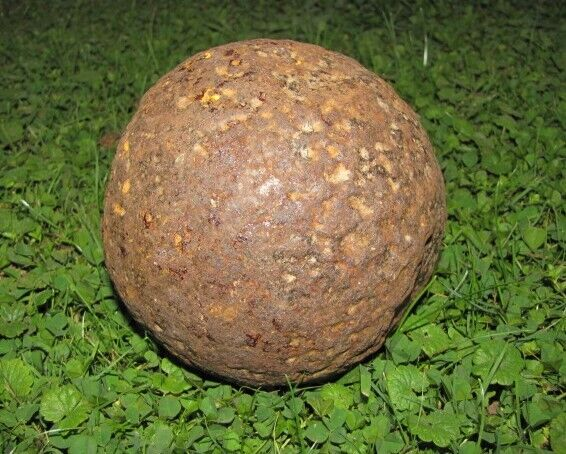 a LARGE OLD 21 Pound CANNONBALL from PENNSYLVANIA Civil War? Revolutionary War?