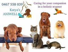 Katya's ANIWELL - Perth Prime Pet Sitting, Fitness & Wellness Stirling Area Preview