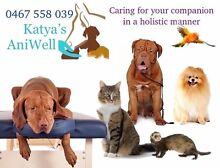Greater Perth + Hinterland: 24/7 Pet Sitter & K9 Massage Toodyay Area Preview