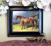 Antique Horse Print