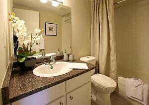 Large Apartment - Bright - Downtown - call us today! Windsor Region Ontario image 4
