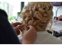 Delicate nude and ivory sparkly wedding Bridal Bride hair vines accessories