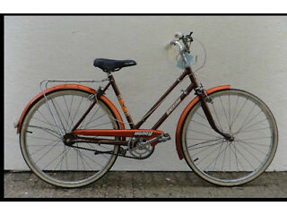 Raleigh Honey dutch bike ladies Serviced Warranty- small frame 17in Welcome in The Peanut Factory
