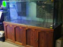 Tanks clearance at windsor fish hatchery 1000ltrs $500 Werrington County Penrith Area Preview