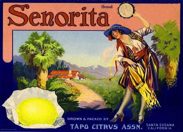 Santa Susana Senorita Lemon Citrus Fruit Crate Label Art Print