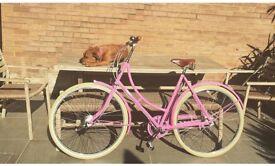 Pashley Poppy ladies bike blush pink 22inch