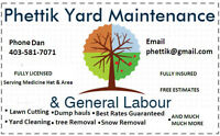 Yard clean up and weekly cuts and upkeep.