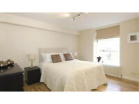 Amazing large three bedroom flat with living room and beautiful garden in Finsbury Park N4