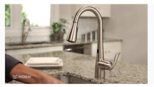 MOEN KITCHEN FAUCET BRAND NEW STAINLESS PULL OUT SPRAY