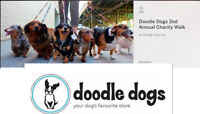 DOODLE DOGS 2ND ANNUAL CHARITY WALK