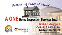 HOME INSPECTION SERVICES INC.