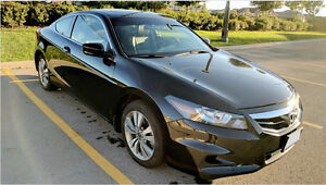 Beautiful 2012 Honda Accord EX-L Loaded Coupe