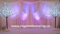 Make your wedding memorable for an affordable price