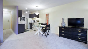 VERY CUTE FULLY FURNISHED ONE BEDROOM PLUS DEN EXECUTIVE SUITE