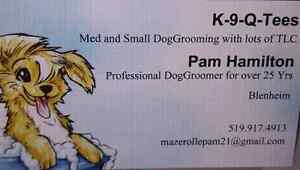 K 9 Q-Tees dog grooming