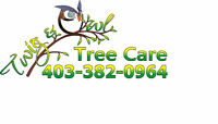 Book your Spring Pruning Now with Twig & Owl Tree Care Ltd.