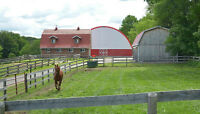 FREE month - HORSE BOARDING, close to everything, Caledon East