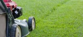 Summer seasons gardening ( lawn mower and jet wash from £30 ) OVERGROWN GARDENS WELCOME