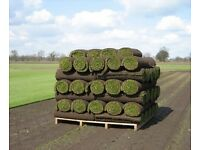 Turf and Topsoil supplies