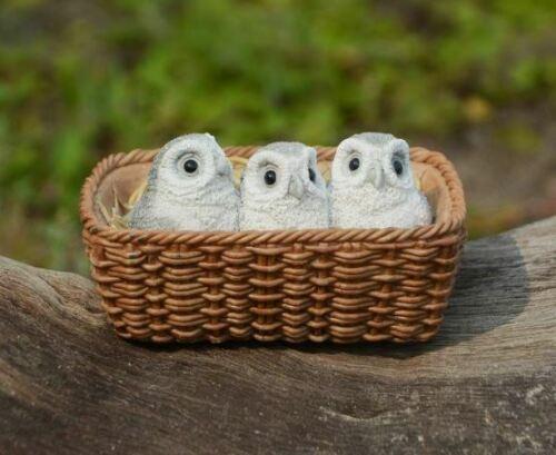 Miniature Dollhouse FAIRY GARDEN Figurine ~ Trio of Baby Owls in Basket ~ NEW