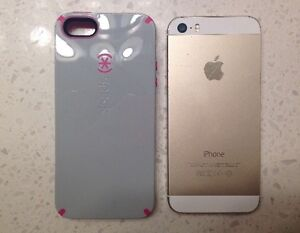 iphone5s gold with case