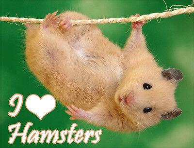Hamster Fridge Magnet - Wildlife