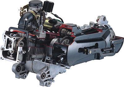 AT Motor Honda Lizens GY6, 10 Zoll Felge, 50cc (139QMB/QMA) REX Kreidler ZNEN