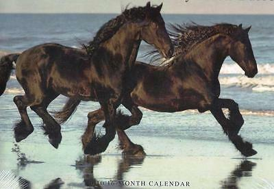 HORSES by Mark Barrett 11x24 inch ~ SEALED Majestic Horse Photos 2010 Calendar