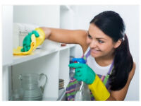 HonestQuickProfessional,Cleaning Lady,End of Tenancy Cleaning,Domestic Cleaner,House Cleaner,Cleaner