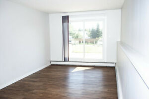 Newly renovated two bedroom apartment in great location!