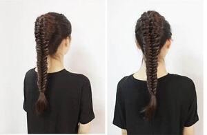 Clip in hair extension,Braid Fishtail Plait Ponytail, Elastic... Regina Regina Area image 7