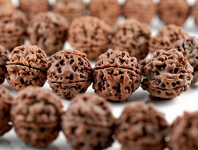 16-17mm Natural Rudraksha Bodhi Seed Mala Meditation Beads Dark Brown Round 7.5