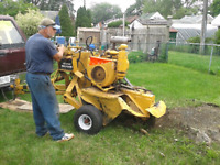 Stump Grinding Tree Removal