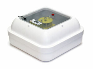 Egg Incubators & Poultry Raising Supplies