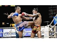 Muay Thai training / sparring partner (near Leyton)