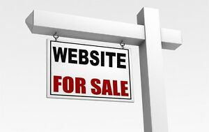 Excellent E-Commerce Website for Sale! Work from your phone!