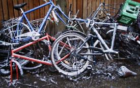 Wanting free scrap biycles
