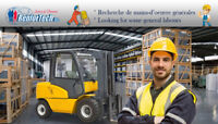 Journalier / General Labour (St-Isidore)