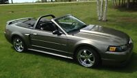 Immaculate 2002 Ford Mustang GT      $16,000