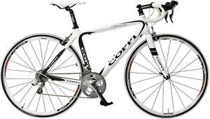 Goppi fast and race bike