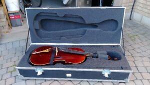 Custom ABS Road/Cargo Case for Cello