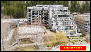 WATERFRONT CONDO SICAMOUS