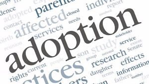 Women needed for a study on adoption Saguenay Saguenay-Lac-Saint-Jean image 2