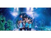 SEA LIFE TICKETS FREE ENTRY FOR TWO PEOPLE, VALID ANY SATURDAY OR SUNDAY JANUARY 2017