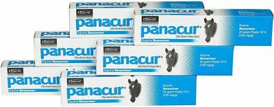 Panacur Equine Paste 10% Fenbendazole Horse Wormer 25 grams Six Pack