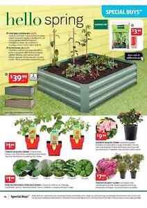Raised garden bed Plumpton Blacktown Area Preview